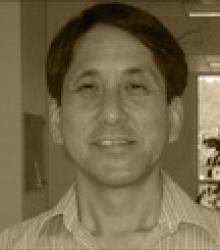 Darryl K Shibata  MD