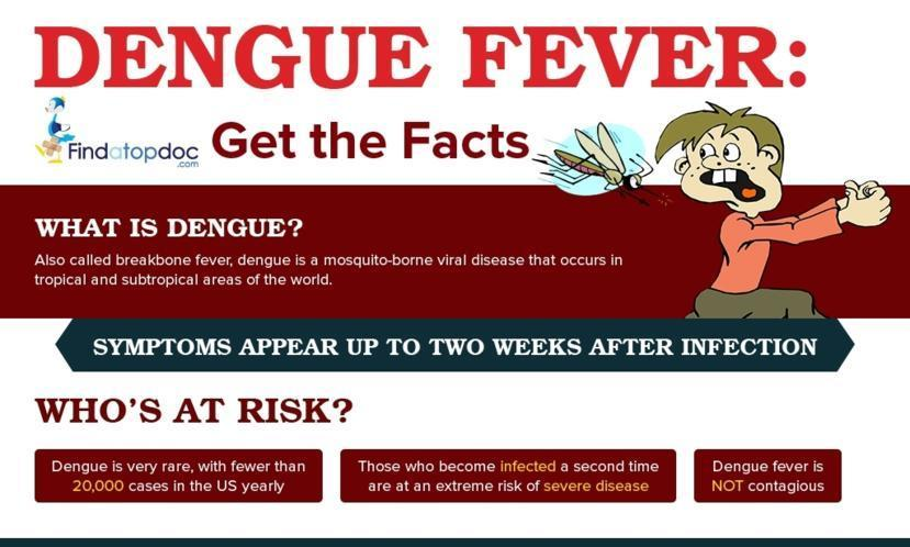 Dengue Fever Spotlight | Learn Science at Scitable - Nature