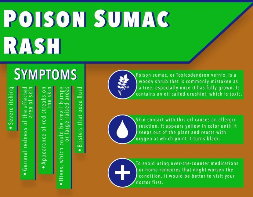 Poison Sumac Rash: Symptoms, Causes, Treatment, and Diagnosis