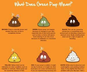 Is Your Poop Healthy? What Are the Signs of Healthy Poop?
