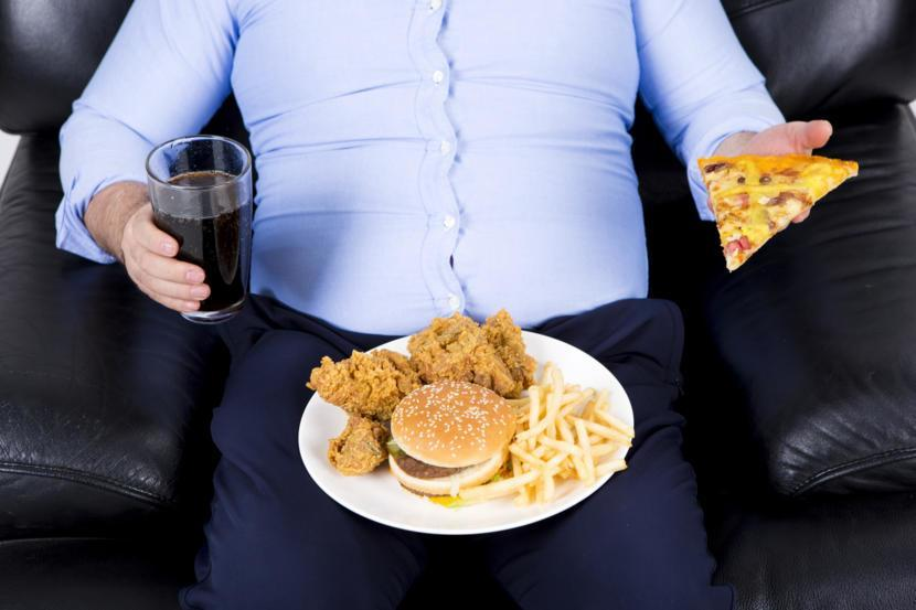 Understanding Metabolism