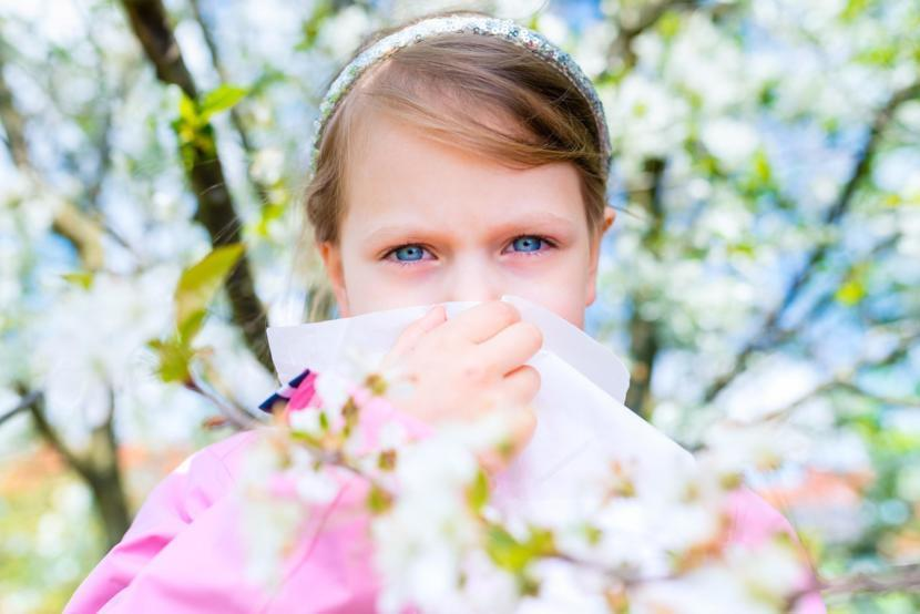 Allergy Season Would Mainly Depend On The Underlying Factor Of What Individuals Are Allergic To And Where They Live If An Individual Is Suffering From A
