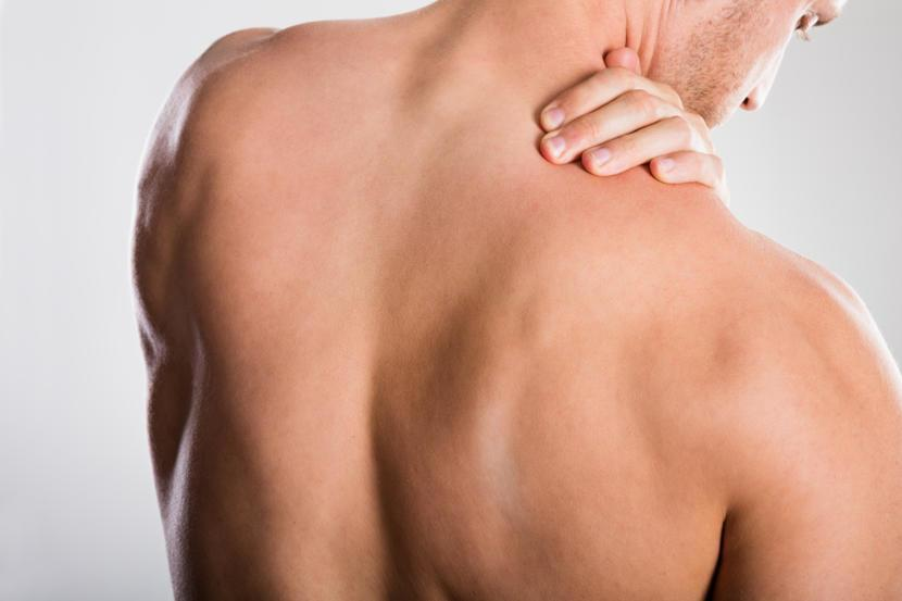 Scapula And Winged Scapula Anatomy Function Injuries And Defects