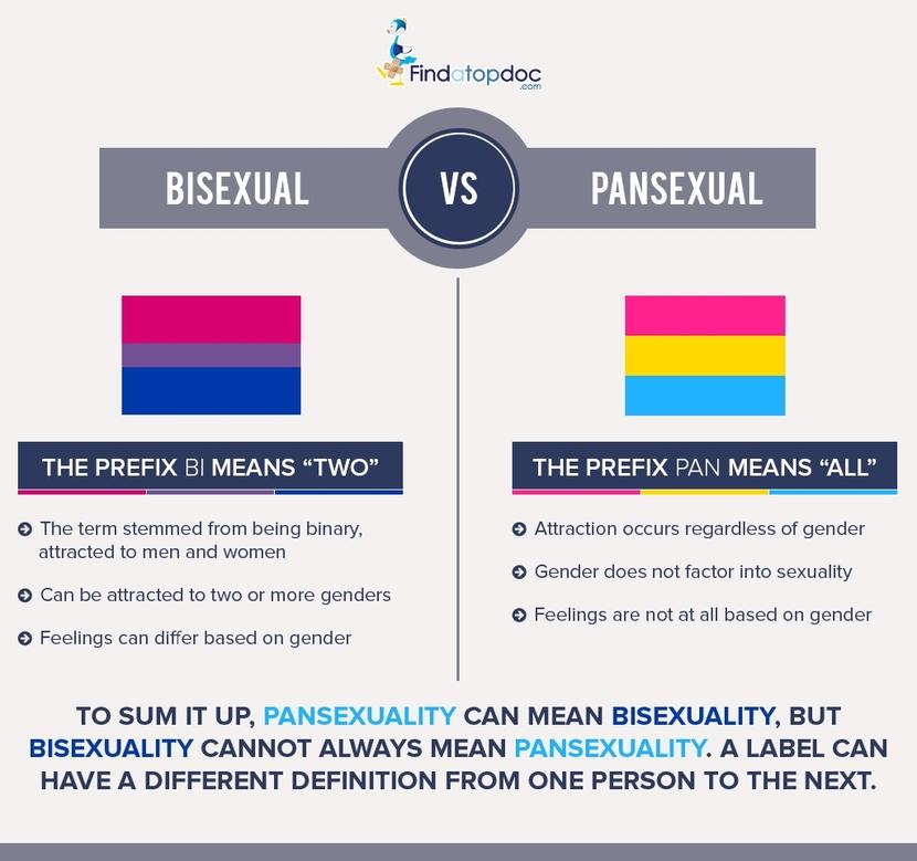 What does the word pansexual mean