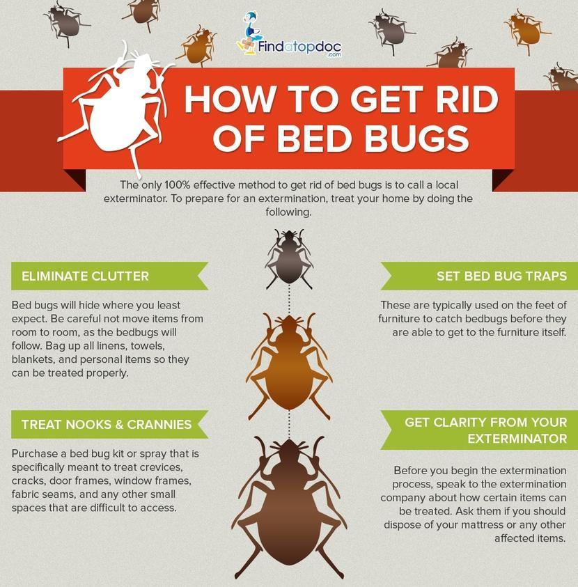 How Can You Get Rid Of Bed Bugs For Good