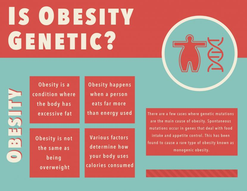 The Diet, Obesity and Genes (Diogenes) Dietary Study in ...